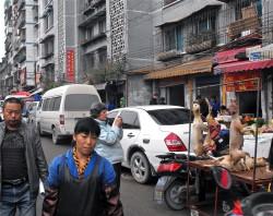贵州省贵阳市的狗肉出售