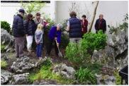 尼尔森分会会员和Beverley在黄石花园种植纪念'Robin 的树'