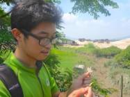 中国红树保护组织工作人员向Deborah展示不同种类的红树